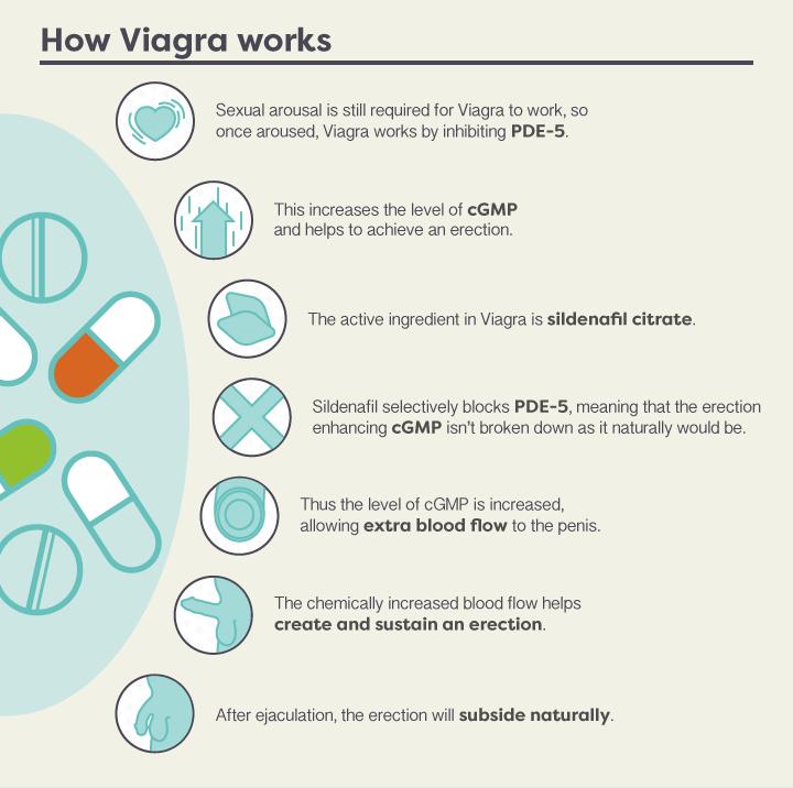 How-does-Viagra-work-V2-4